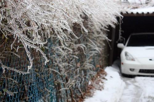 Toronto Ice Storm-12