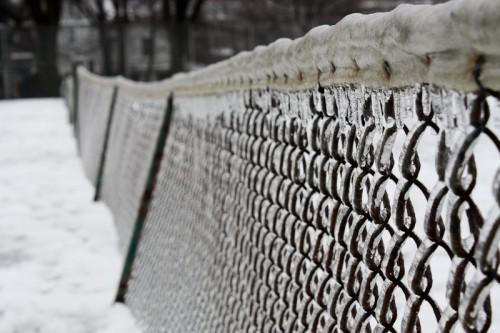 Toronto Ice Storm-17