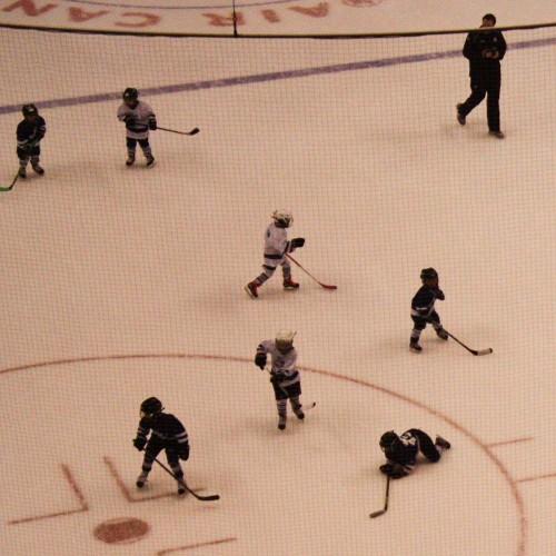 Toronto Hockey-14