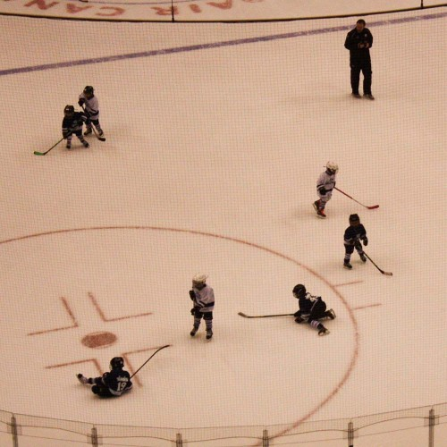 Toronto Hockey-15