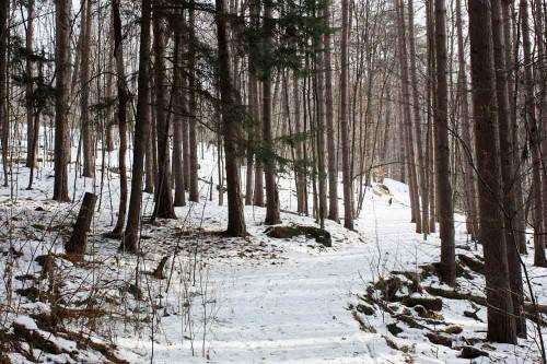 Montpelier Hubbard Park-2
