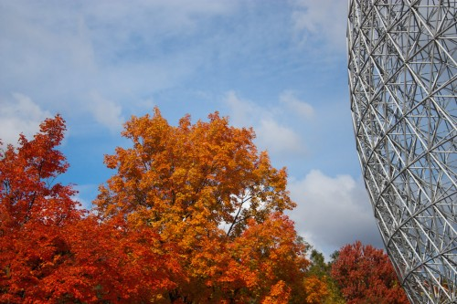 Montreal Fall-13