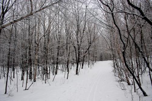 Mont Saint-Hilaire-1