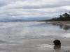 Cape Kimberley Beach