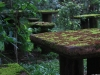 Paronella Park Picnic Table
